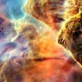 nebula face & form multiple 3 light