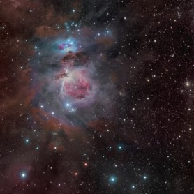 """Orion """"star group"""" primate face wave"""