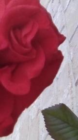 rose half face flip