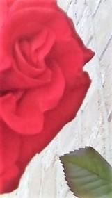 rose half face light flip