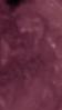 (purple-colorizing)-Sun elder face flip